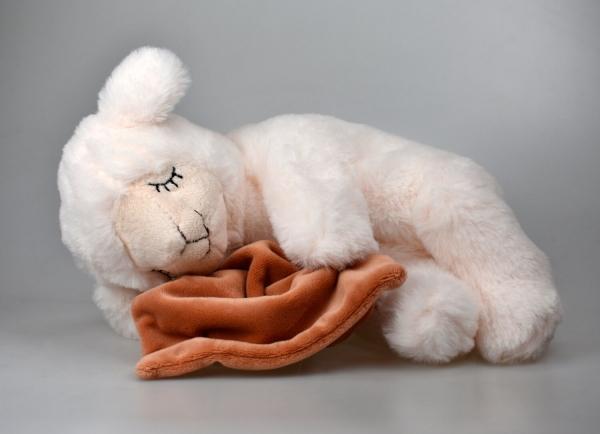 Schlafendes Schaf Lotta