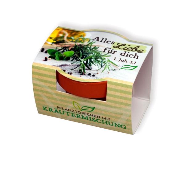 Pflanzenanzucht-Set Kräuter