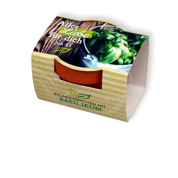 Pflanzenanzucht-Set Basilikum